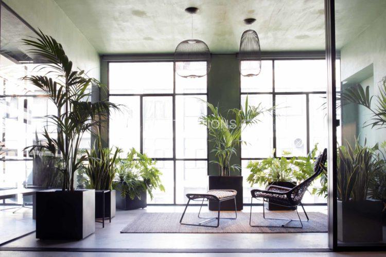 green loft